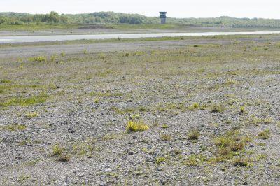 Aeroport Brive la Gaillarde, © R.Seitre/Aéro Biodiversité