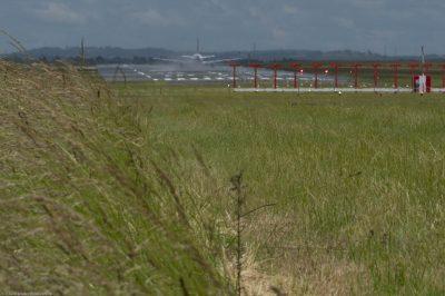 Fauche différenciée,Aéroport de Paris-Charles de Gaulle, © R.Seitre/Aéro Biodiversité