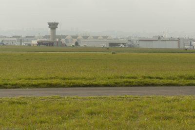 Prairie de l'Aéroport Le Bourget, © R.Seitre/Aéro Biodiversité