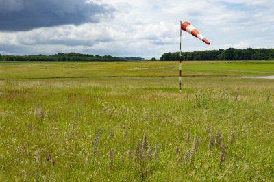 Prairie à orchidées, Aerodrome de Cergy Pontoise, Cormeilles-en-Vexin, © K.de Chateauvieux/Aéro Biodiversité